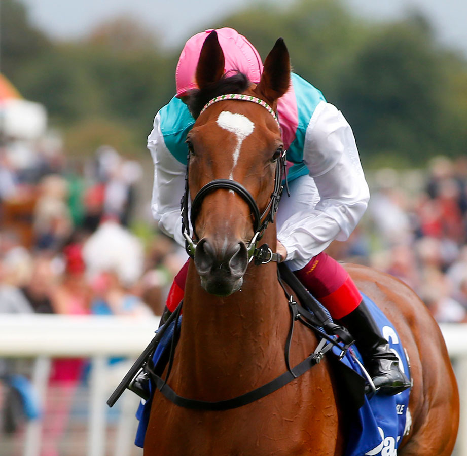 Enable and Frankie Dettori before winning The Darley Yorkshire