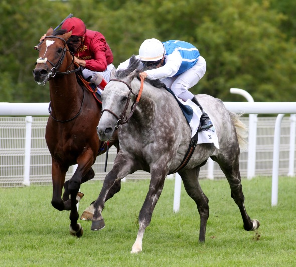 Solow Sussex Stakes