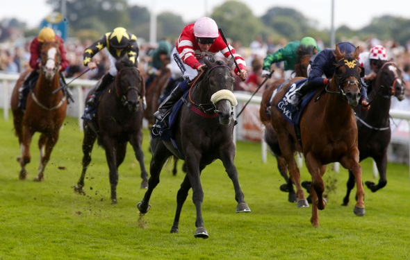 Mecca's Angel Nunthorpe Stakes win