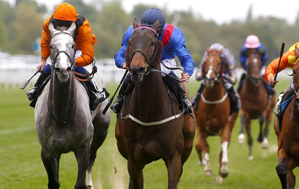 Clever Cookie Betway Yorkshire Cup win