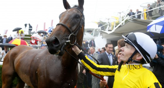 Goodwood Cup