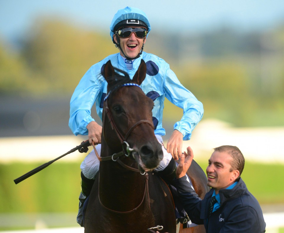 ALMANZOR could head for #ChampionsDay