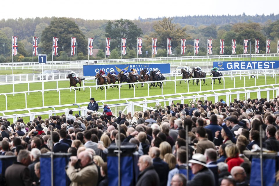 #ChampionsDay Preview evening