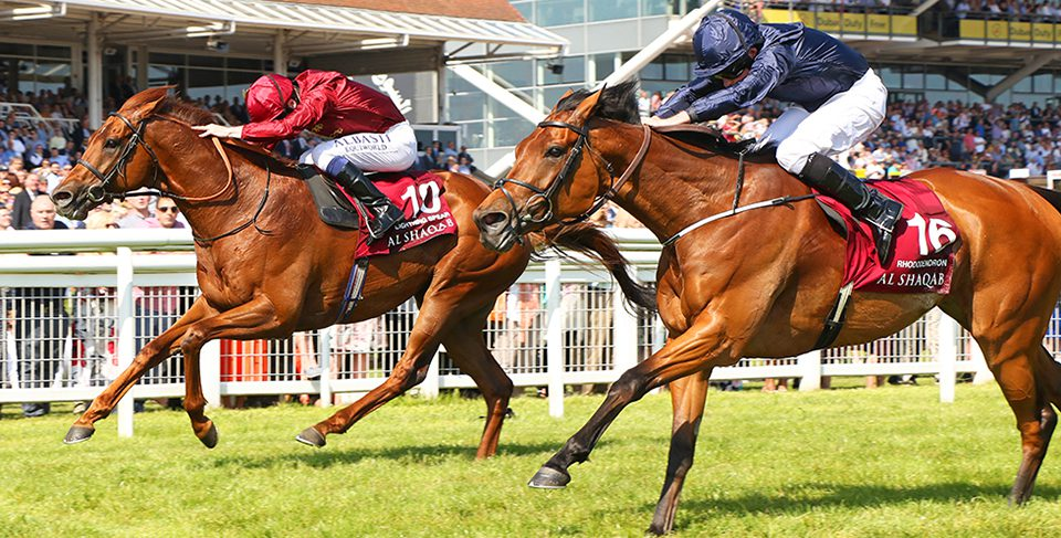 RHODODENDRON (near) ridden by Ryan Moore beating Lightning Spear in The Al Shaqab Lockinge Stakes (Group 1) at Newbury