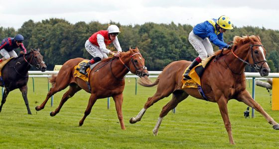 Dream of Dreams Betfair Sprint Cup