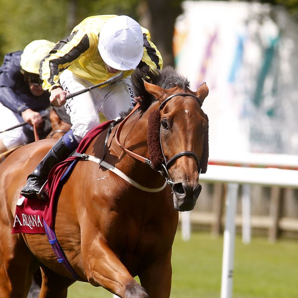 """Big Orange and Jamie Spencer winning The Princess Of Wales's Arqana Racing Club Stakes  Newmarket 9.7.15 Pic Dan Abraham-racingfotos.com  THIS IMAGE IS SOURCED FROM AND MUST BE BYLINED """"RACINGFOTOS.COM"""""""