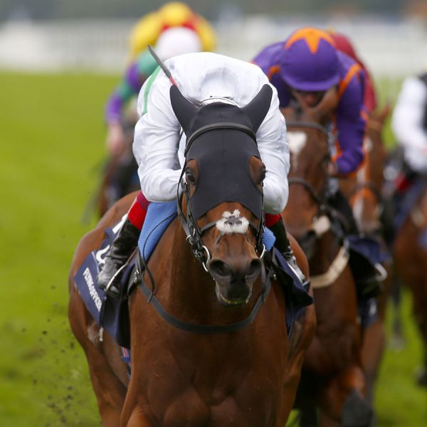 Flying Officer and Frankie Dettori winning The Qipco British Champions Long Distance Cup