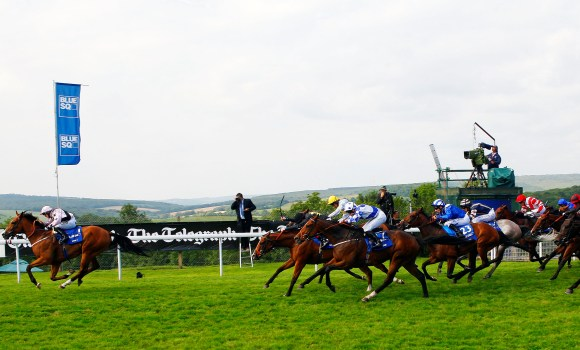 Hoof-It-wins-the-Stewards-Cup-8504633