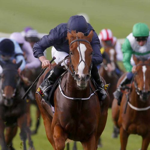 "Alice Springs and Ryan Moore winning The Ã300,000 Tattersalls Millions 2YO Fillies' Trophy  Newmarket 3.10.15 Pic Dan Abraham-racingfotos.com  THIS IMAGE IS SOURCED FROM AND MUST BE BYLINED ""RACINGFOTOS.COM"""
