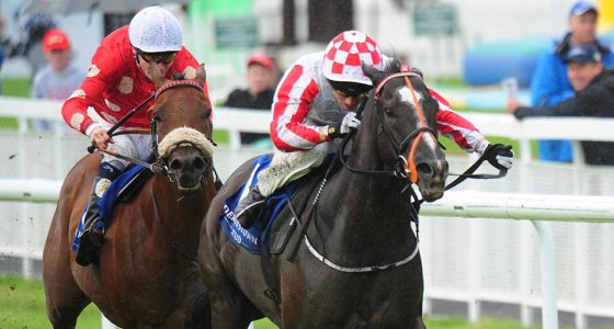 Sole Power Temple Stakes