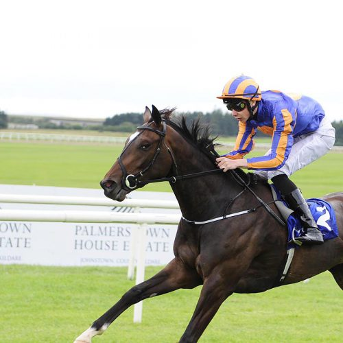 """CURRAGH 22-8-2015. BALLYDOYLE and Joseph O'Brien win for trainer Aidan O'Brien. Photo Healy Racing / Racingfotos.com  THIS IMAGE IS SOURCED FROM AND MUST BE BYLINED """"RACINGFOTOS.COM"""""""