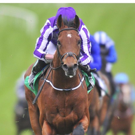 """NAVAN 17-4-2016. THE GURKHA and Ryan Moore win for trainer Aidan O'Brien. Photo Healy Racing / Racingfotos.com  THIS IMAGE IS SOURCED FROM AND MUST BE BYLINED """"RACINGFOTOS.COM"""""""