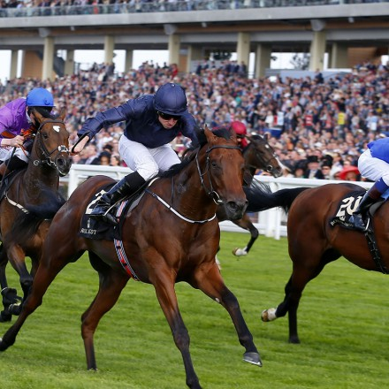 "Washington DC and Ryan Moore (dark blue) winning The Windsor Castle Stakes  Royal Ascot 16.6.15 Pic Dan Abraham-racingfotos.com  THIS IMAGE IS SOURCED FROM AND MUST BE BYLINED ""RACINGFOTOS.COM"""