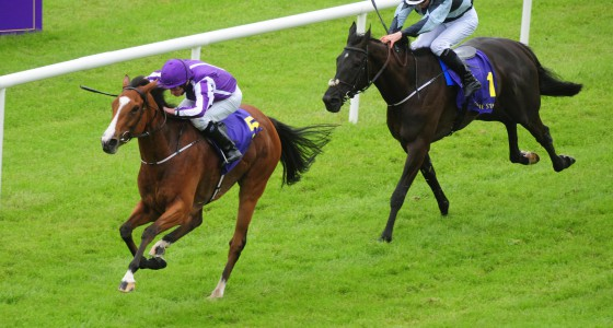 """Curragh 26-6-16  MINDING & Ryan Moore win the Group 1 Sea The Stars Pretty Polly Stakes from BOCCA BACIATA & COlm O'Donoghue.(Photo HEALY RACING)  THIS IMAGE IS SOURCED FROM AND MUST BE BYLINED """"RACINGFOTOS.COM"""""""