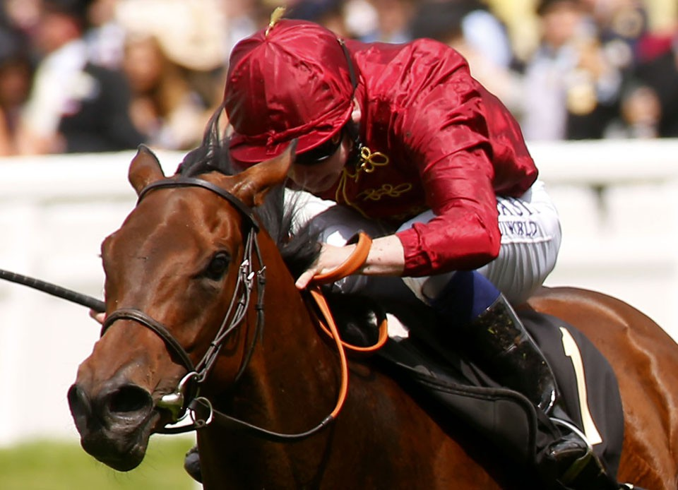 """Brave Anna and Seamie Heffernan winning The Albany Stakes from Bletchley Royal Ascot 17.6.16 Pic Dan Abraham-racingfotos.com  THIS IMAGE IS SOURCED FROM AND MUST BE BYLINED """"RACINGFOTOS.COM"""""""