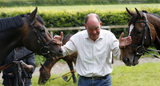 """Henry Candy with Twilight Son (left) and Limato ahead of the Moet and Chandon Festival at Newmarket Henry Candy Stables 4.7.16 Pic Federica Mensah-racingfotos.com  THIS IMAGE IS SOURCED FROM AND MUST BE BYLINED """"RACINGFOTOS.COM"""""""