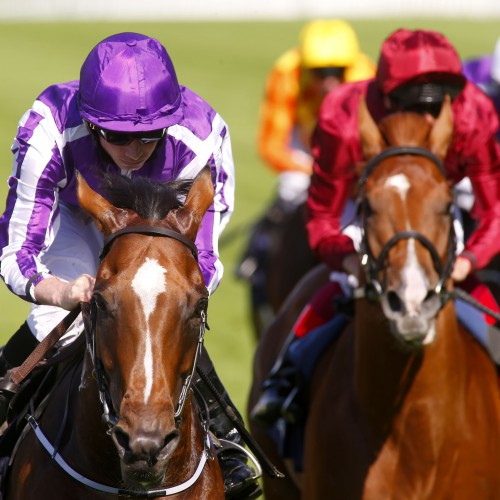 "Highland Reel and Ryan Moore winning The King George VI And Queen Elizabeth Stakes from Wings Of Desire  Ascot 23.7.16 Pic Dan Abraham-racingfotos.com  THIS IMAGE IS SOURCED FROM AND MUST BE BYLINED ""RACINGFOTOS.COM"""
