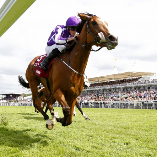 """Minding and Ryan Moore  winning Qatar Handicap Stakes  Goodwood 29.7.16 Pic Dan Abraham-racingfotos.com  THIS IMAGE IS SOURCED FROM AND MUST BE BYLINED """"RACINGFOTOS.COM"""""""