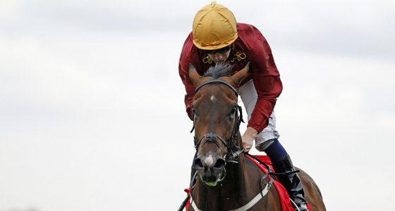 Oisin Murphy gears uo ahead of the Ebor festival at York
