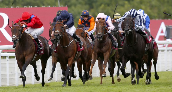 """Take Cover and David Allen (red) winning The Qatar King George Stakes from Washington DC Goodwood 28.7.16 Pic Dan Abraham-racingfotos.com  THIS IMAGE IS SOURCED FROM AND MUST BE BYLINED """"RACINGFOTOS.COM"""""""