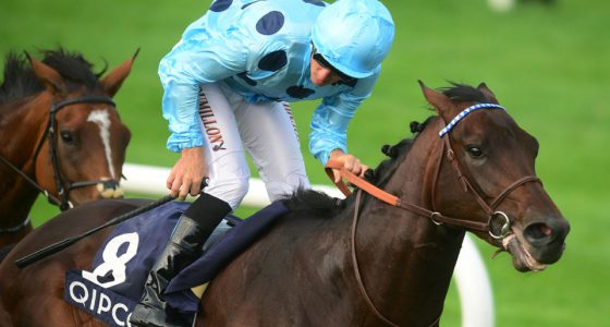 "Leopardstown 10-9-16  ALMANZOR & Christophe Soumillon get the better of FOUND & Frankie Dettori  to win the Group 1 Qipco Irish Champion Stakes.Photo Healy Racing / Racingfotos.com  THIS IMAGE IS SOURCED FROM AND MUST BE BYLINED ""RACINGFOTOS.COM"""