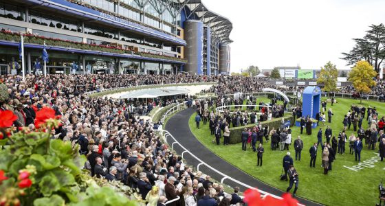<> at Ascot Racecourse on October 17, 2015 in Ascot, England.