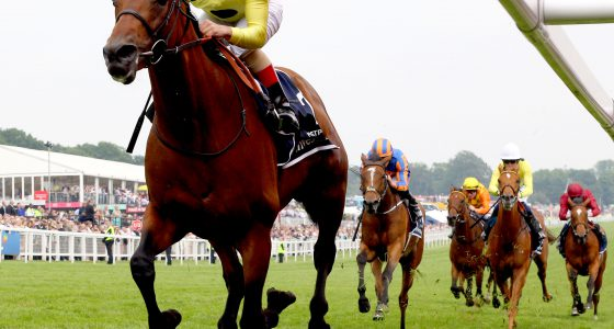"""Postponed and Andrea Atzeni winning The Queen Elizabeth II Coronation Cup  Epsom 4.6.16 Pic Dan Abraham-racingfotos.com  THIS IMAGE IS SOURCED FROM AND MUST BE BYLINED """"RACINGFOTOS.COM"""""""