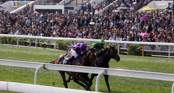 Highland Reel gets beaten a shot head in the Hong King Vase