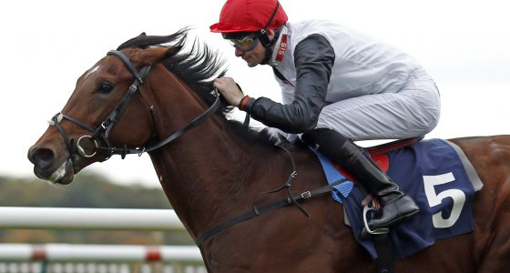 """CRACKSMAN (Robert Havlin) wins The Breeders Supporting Racing EBF Maiden Stakes Newmarket 19 Oct 2016 - Pic Steven Cargill / Racingfotos.com  THIS IMAGE IS SOURCED FROM AND MUST BE BYLINED """"RACINGFOTOS.COM"""""""