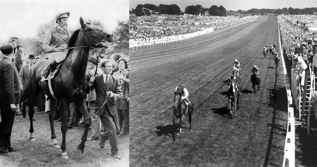 Nijinsky landed the St Leger (left) and the Derby (right) as well as the 2000 Guineas