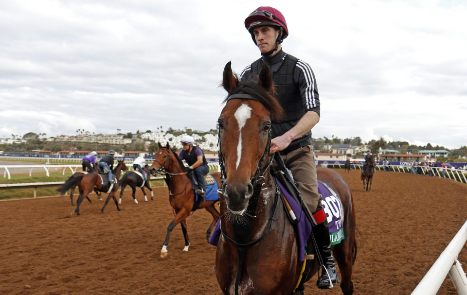 Highland Reel On Course To Bow Out In Hong Kong Vase Qipco British