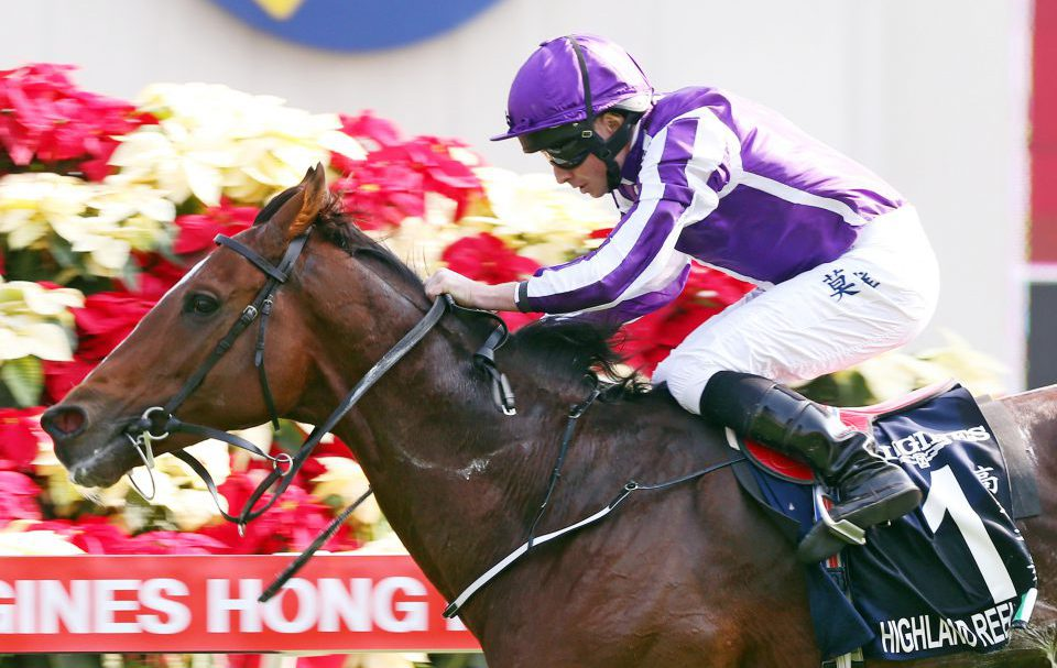 Highland Reel Signs Off In Style In Hong Kong Qipco British
