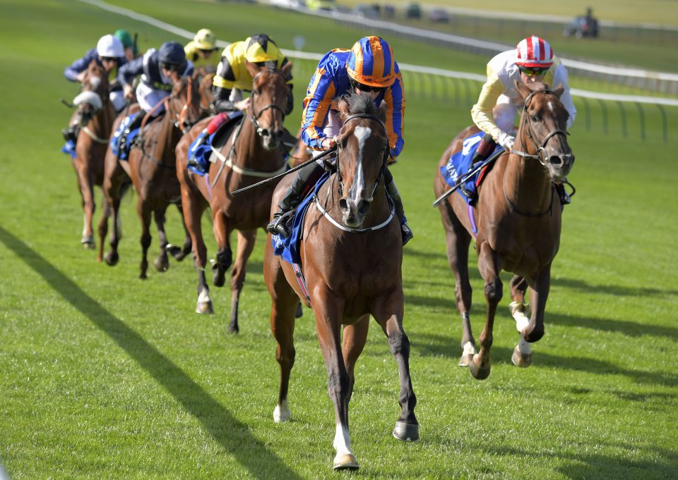 Safety in numbers for Aidan O'Brien as Investec Oaks entries