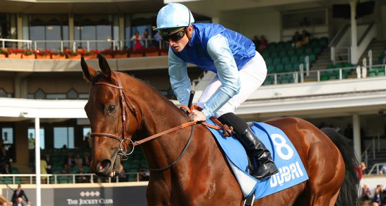 PERSIAN KING ridden by Pierre-Charles Boudot 1st The Masar Godolphin Autumn Stakes