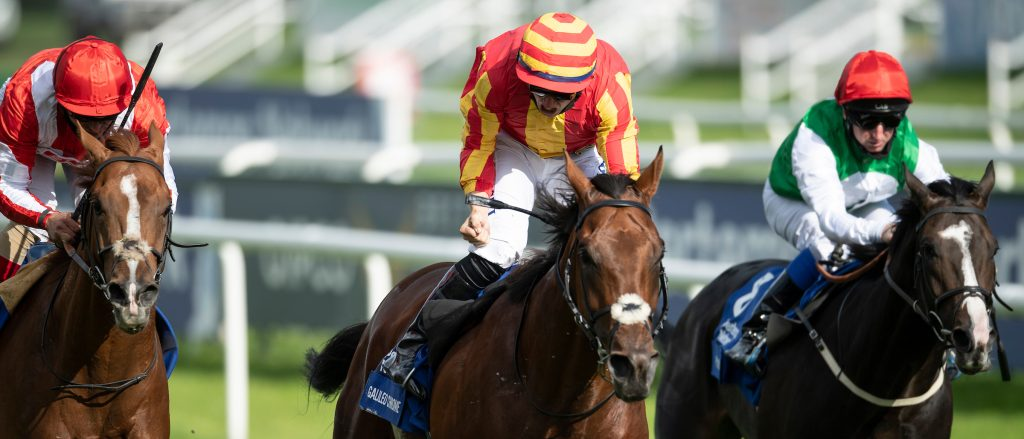 Tom Marquand wins the Pertemps St Legere 202