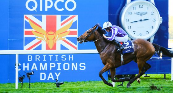 Magical Champions Day