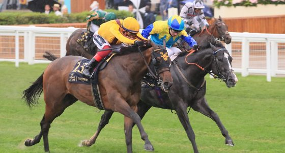Campanelle wins the Commonwealth Cup