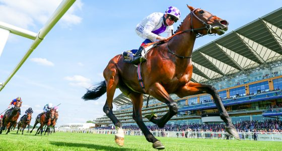 Poetic Flare wins the St James's Palace Stakes at Royal Ascot