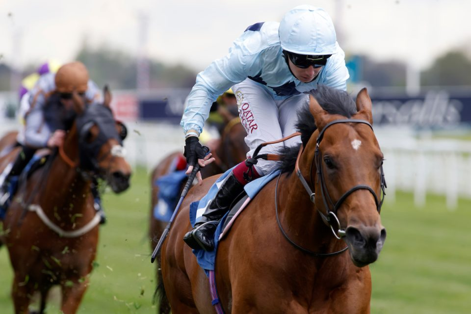 Starman heads the declerations for the Diamond Jubille at Royal Ascot