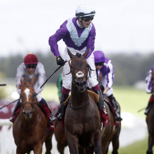 Alcohol Free wins the Qatar Sussex Stakes