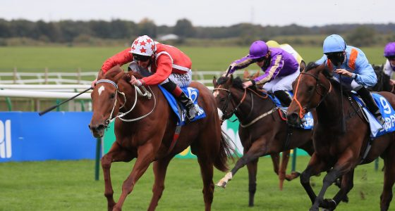 Saffron Beach is entered for the Falmouth Stakes