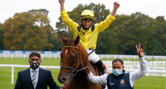 Addeybb to defend Champions Day crown
