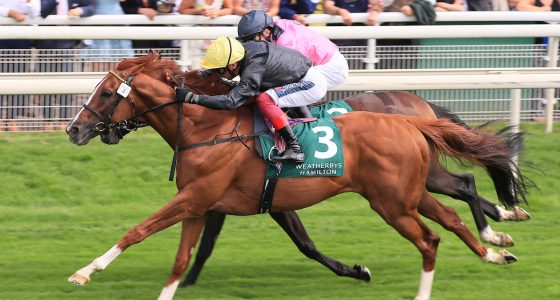 Stradivarius wins the Lonsdale Cup