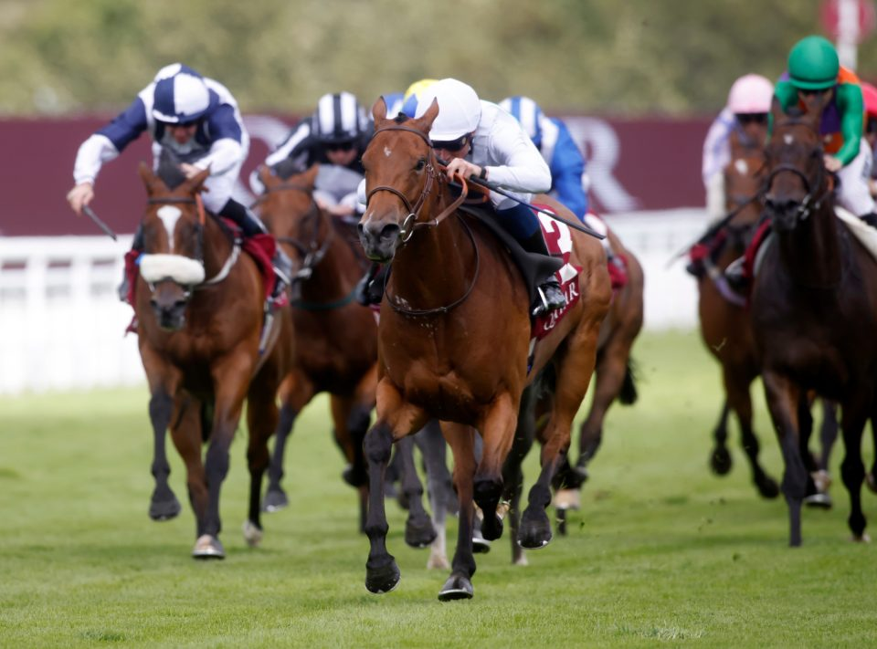 Suesa declared for the Nunthorpe Stakes