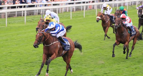 Winter Power wins the Nunthorpe Stakes